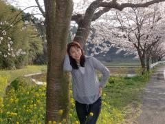 菜の花と桜の道で